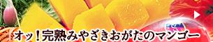 images/bnr_mango.png